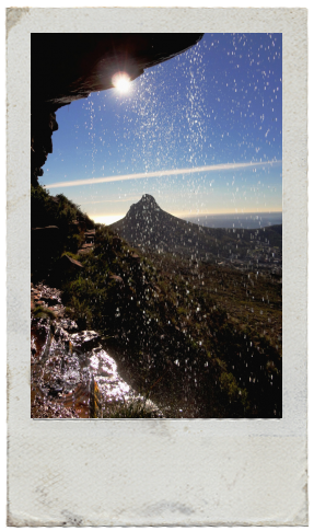 Lion's head in Cape Town south africa