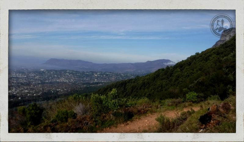 Trail Running Table Mountain to Constantia