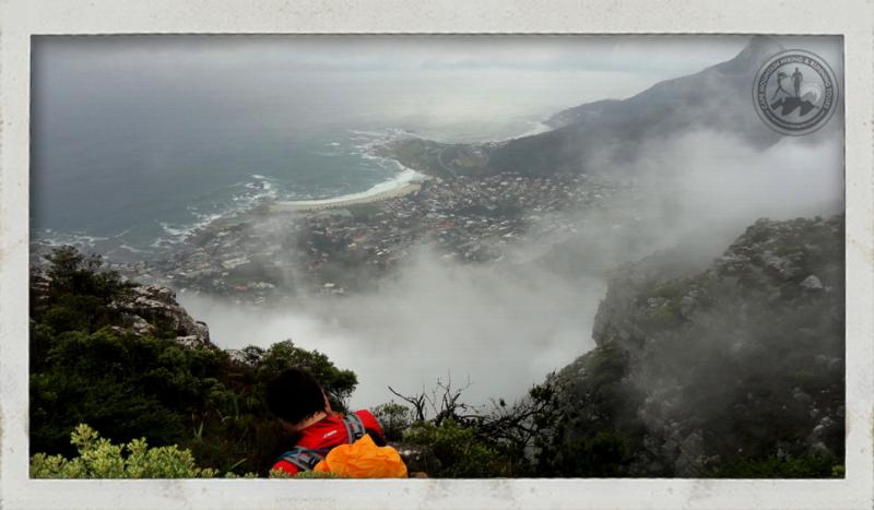 View of Clifton and Lion's Head from Table Mountain