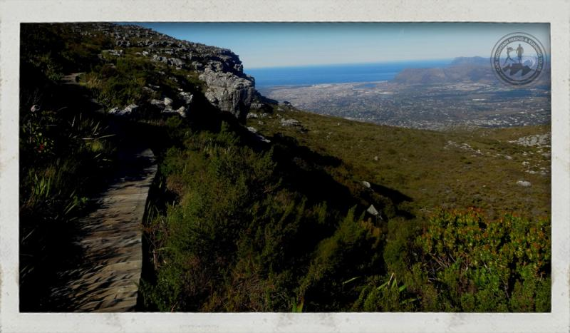 run Cape Town, Trail run, Table Mountain